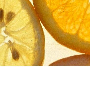 GSE | Prodotti novità in Erboristeria